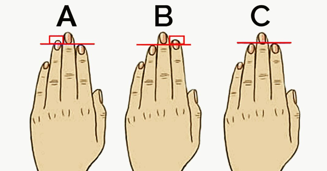 size of your ring finger defines your personality